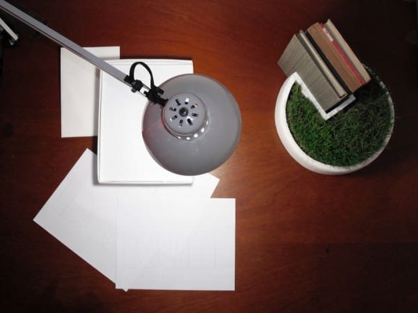 Styrofoam Packaging Into Bookseller Grass 2 • Accessories