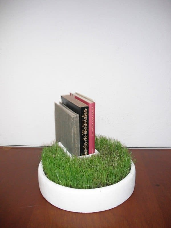 Styrofoam Packaging Into Bookseller Grass 1 • Accessories