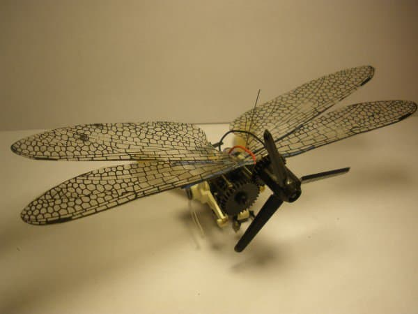 Insected Junk 1 • Recycled Electronic Waste