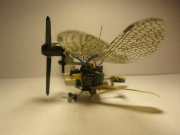 Insected Junk 2 • Recycled Electronic Waste