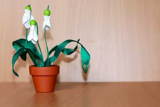 SnowDrops_wide_resize_resize