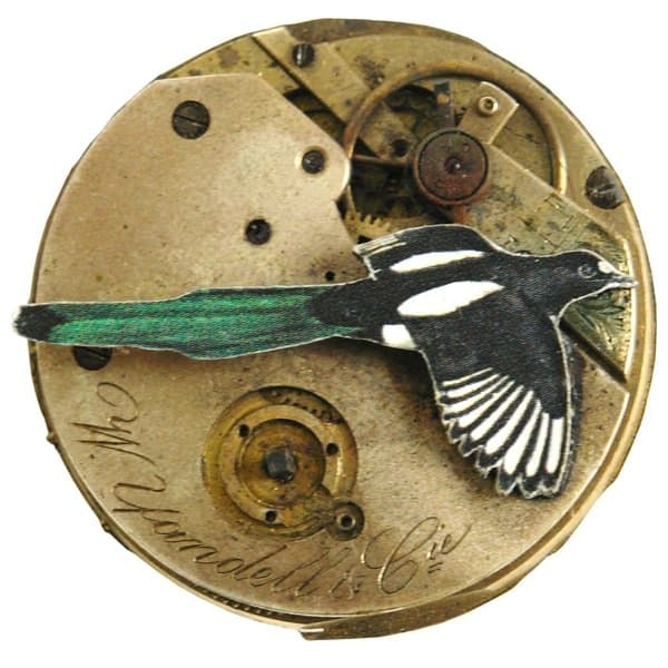 The Aviary_Magpie Brooch