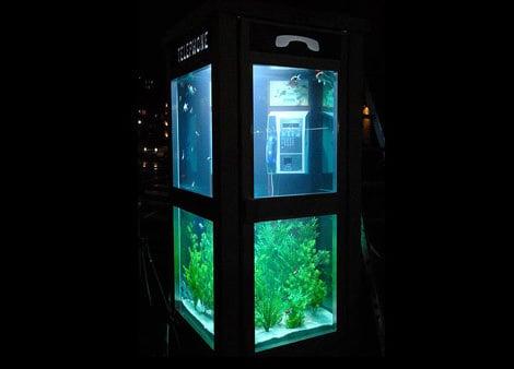 phone-booth-aquarium