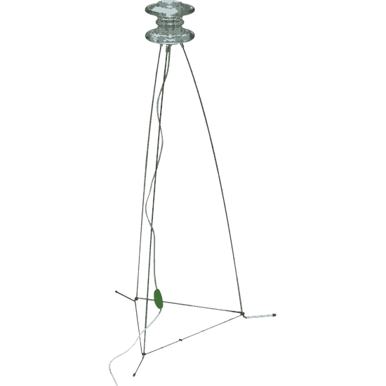 zyglampe001