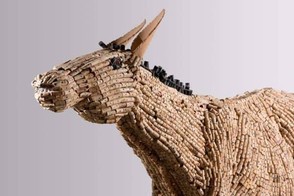 donkey-detail