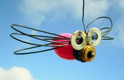 bulb dragonfly1