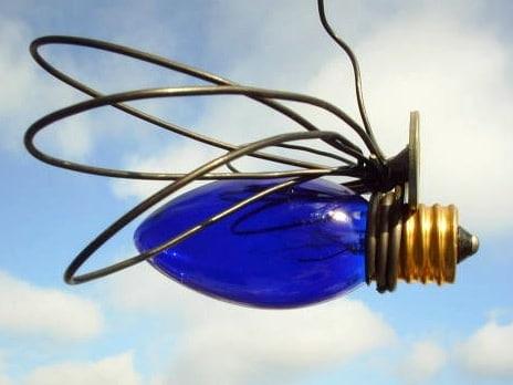 bulb dragonfly2