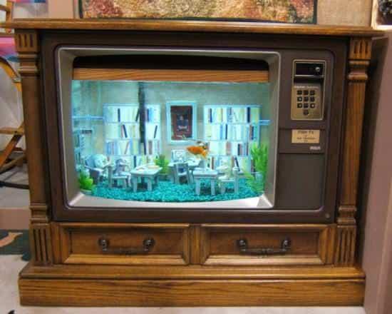 FishTV_op_800x641