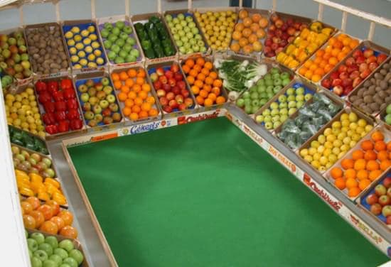 Vegetable Stadium 2 • Recycled Art