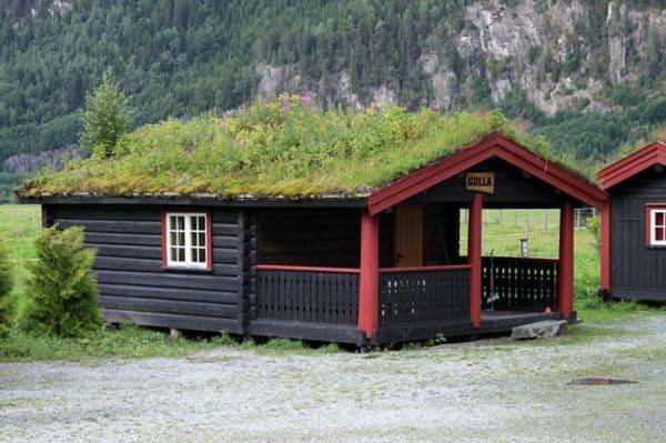 green-roof-norway (4)