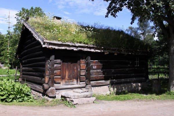 green-roof-norway (5)