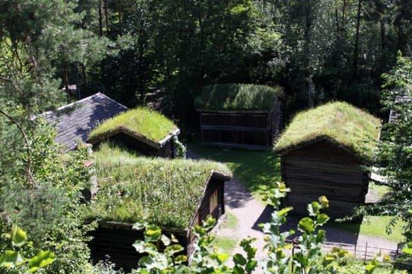 green-roof-norway (8)