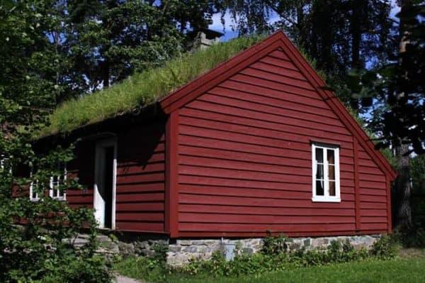 green-roof-norway (9)