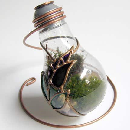 Terrarium Made From Discarded Light Bulb 3 • Lamps & Lights