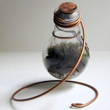 Terrarium Made From Discarded Light Bulb 1 • Lamps & Lights