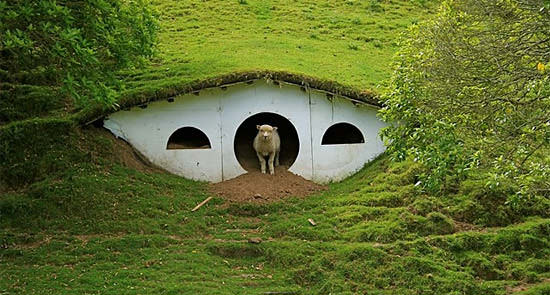 Hobbitons Reused As Houses For The Sheeps 1 • Home Improvement