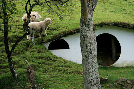 Hobbitons Reused As Houses For The Sheeps 4 • Home Improvement