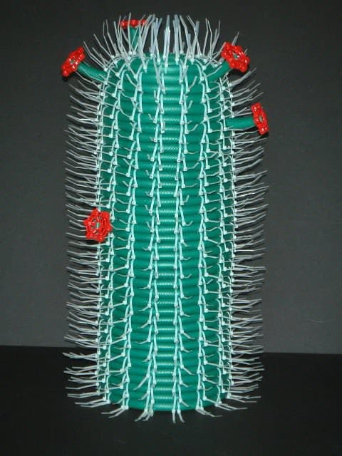 Hose Cactus 2 • Recycled Art