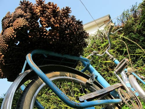 Pine Cone Bike Basket 5 • Upcycled Bicycle Parts