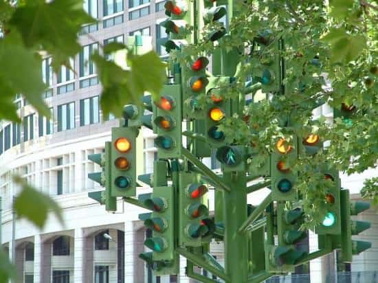 Traffic Light Tree 2 • Home Improvement