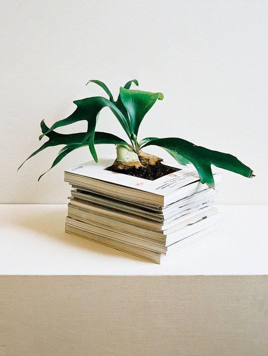 Alternative Planter 1 • Do-It-Yourself Ideas