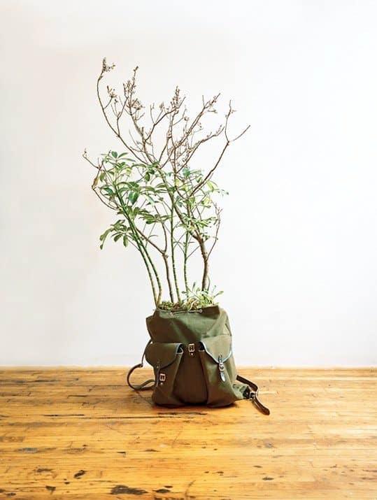 Alternative Planter 3 • Do-It-Yourself Ideas