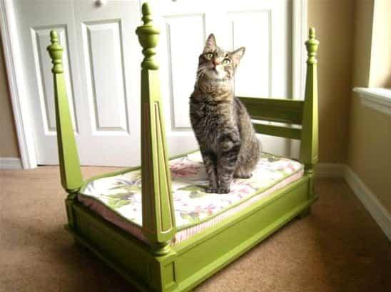 Deluxe Cat Bed 1 • Do-It-Yourself Ideas