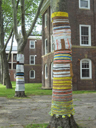 Knit For Trees ! 4 • Interactive, Happening & Street Art