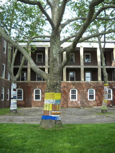 Knit For Trees ! 3 • Interactive, Happening & Street Art