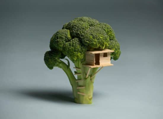 Broccoli Tree House 1 • Do-It-Yourself Ideas