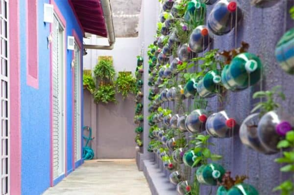 Plastic Bottles Garden 1 • Do-It-Yourself Ideas