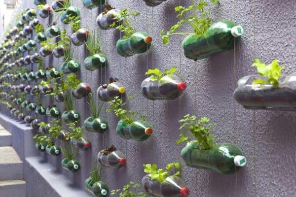 Plastic Bottles Garden 7 • Do-It-Yourself Ideas