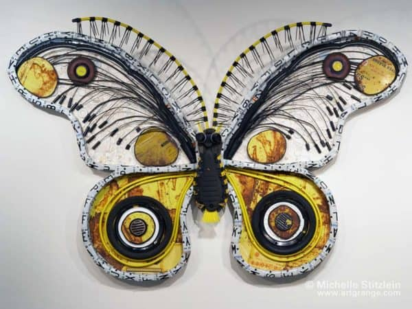 Moth1web