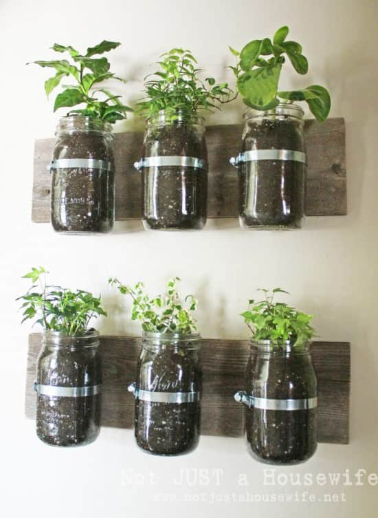 Jar Wall Planter 1 • Do-It-Yourself Ideas