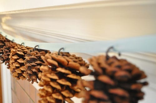 Diy: Pine Cones Garland 5 • Do-It-Yourself Ideas