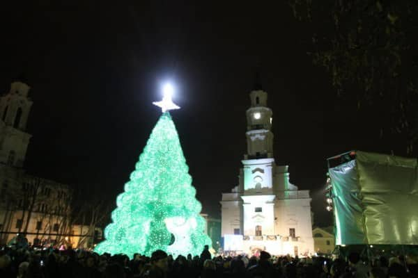 Christmas Tree Made From 40,000 Recycled Plastic Bottles 4 • Recycled Packaging