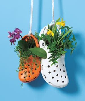 Crocs Garden 1 • Garden Ideas