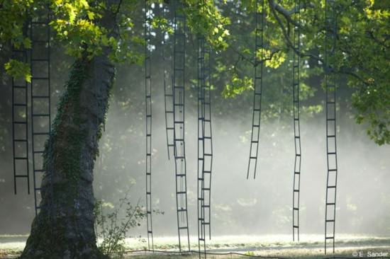 L'arbre Aux Echelles / Ladders Tree 1 • Garden Ideas