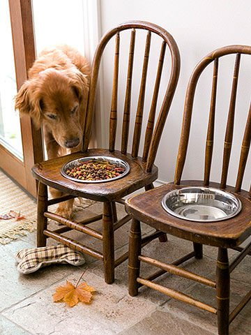 Old Chairs Into Dog Feeding Station 1 • Do-It-Yourself Ideas