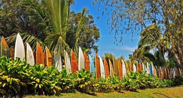 Repurposed Surfboard Fence – Endless Summer 1 • Garden Ideas