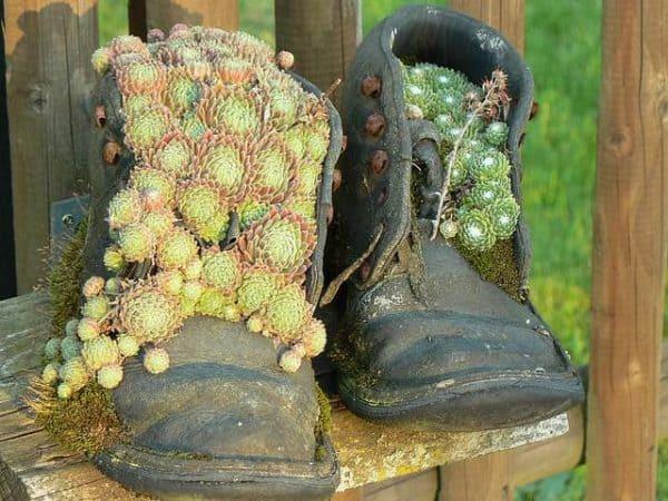 flower-pot-boots-02