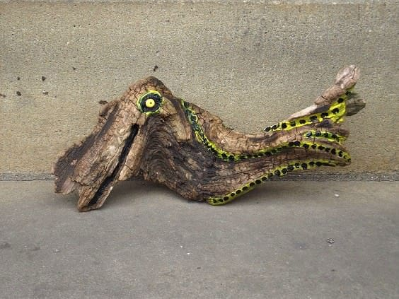 Yellow-fish-driftwood