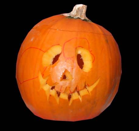 How to Recycle Halloween Pumpkins 1 • Do-It-Yourself Ideas