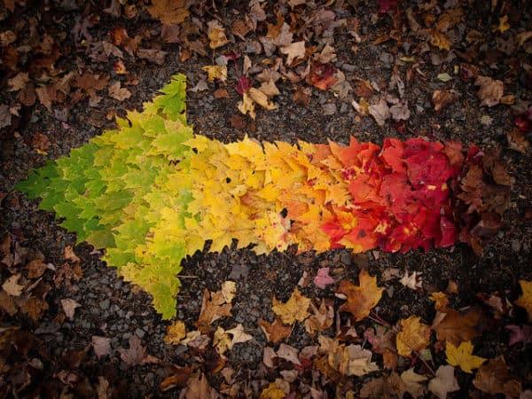 Autumn Spectrum 1 • Do-It-Yourself Ideas