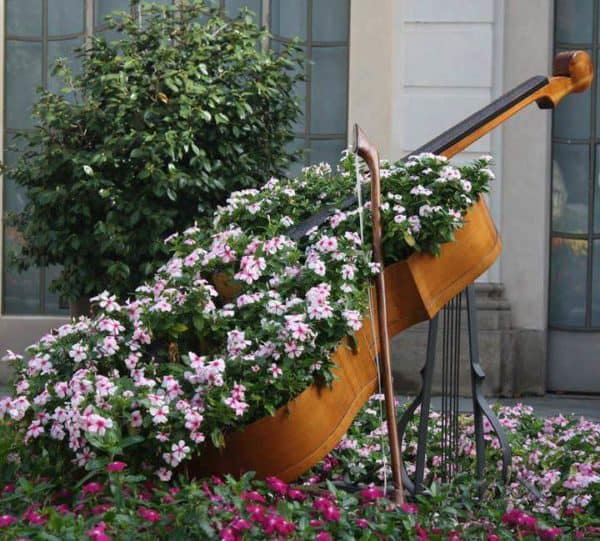Cello Planter 1 • Garden Ideas