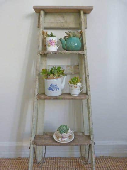 Succulent Garden from an Old Ladder 1 • Do-It-Yourself Ideas