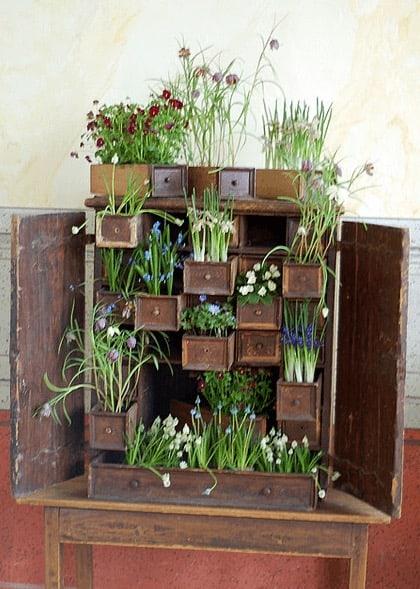 Cupboard Mini Garden 1 • Do-It-Yourself Ideas