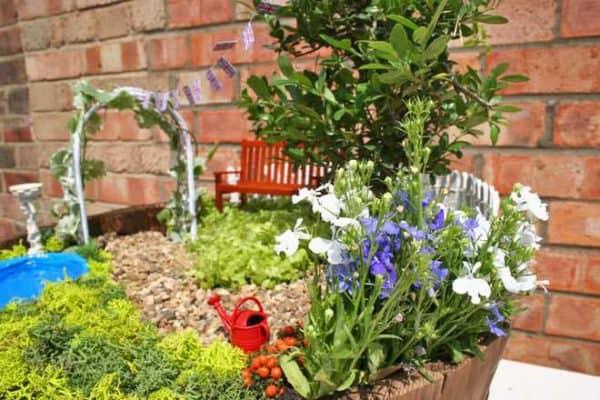 Bridgman-Miniature-Royal-Baby-Commemoration-Garden-DIY-Guide-Flowers-close-up-1-Step-21