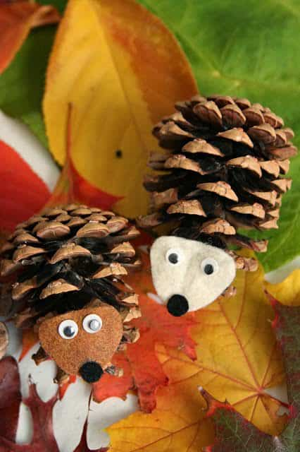 pinecone-hedgies
