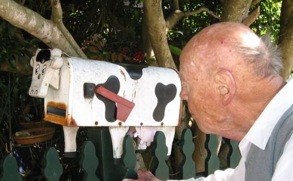 balmain-mailbox-cow-um